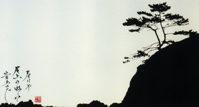 Zen vivo