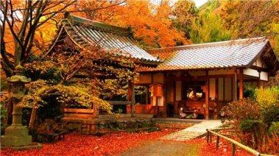 Solidão do outono